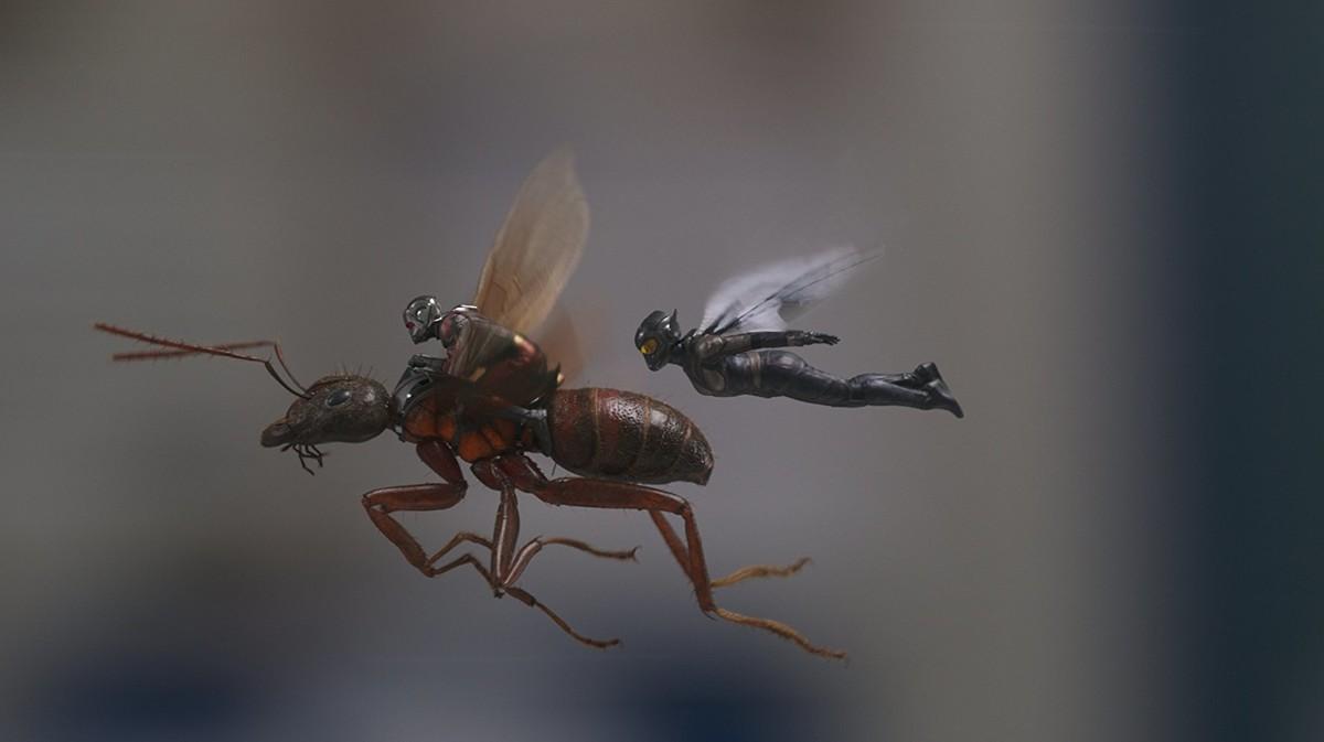 Человек-муравей и Оса кадр 8